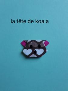 la tête de koala