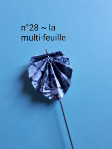 n°28 - la multi-feuille