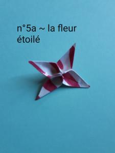 n°5a - la fleur étoilé