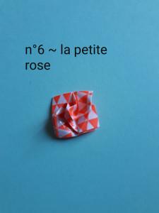 n°6 - la petite rose