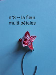 n°8 - la fleur multi-pétales
